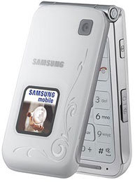 Samsung E420 accessories